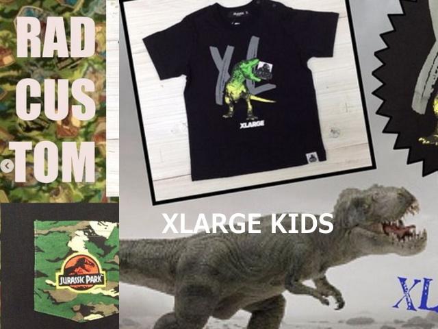恐竜柄の夏向け商品も入荷してます!